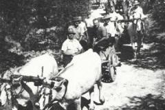 Breve storia di Bagno a Ripoli