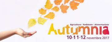 autumnia.jpg