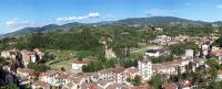 Grassina
